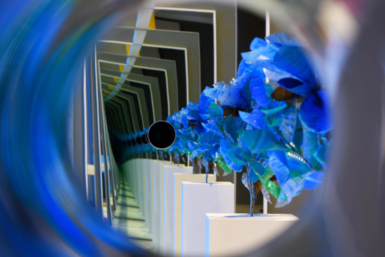 Blau steht auch für die Unendlichkeit, die unerfüllbare Sehnsucht, deshalb ist die blaue Blume Sinnbild der Romantik.  © N. Klinger