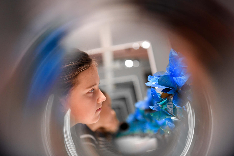 Für Novalis war die blaue Blume auch Sinnbild für den Verlust seiner Verlobten, für die unerfüllte Liebe. © N. Klinger