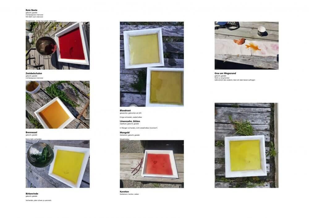 The Colors of Métis